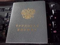 Заявление на получение дубликата трудовой книжки