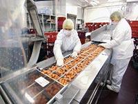 Разработка стратегии для управления персоналом на пищевом предприятии